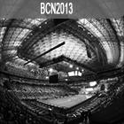 Campeonato del mundo de natación BCN2013