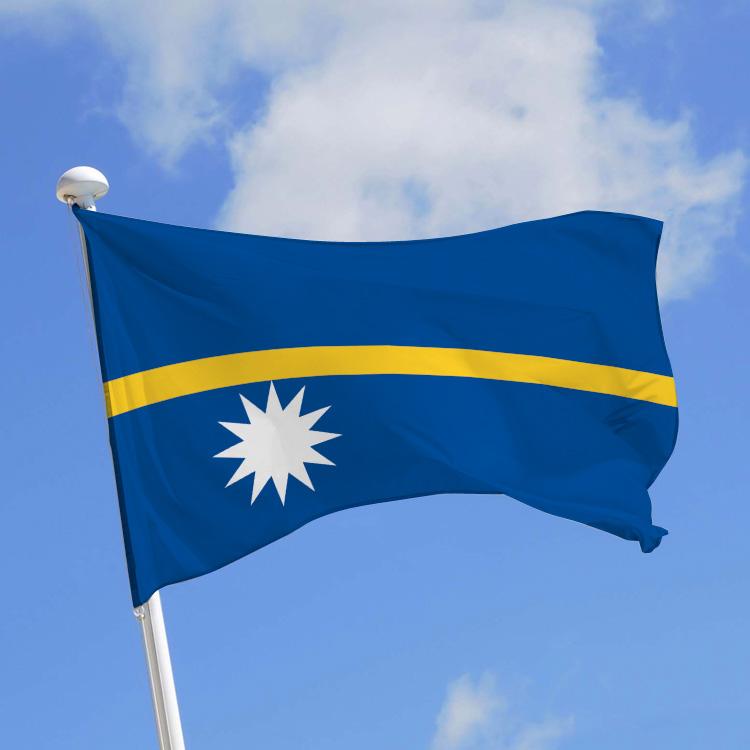 Drapeau Ile Nauru