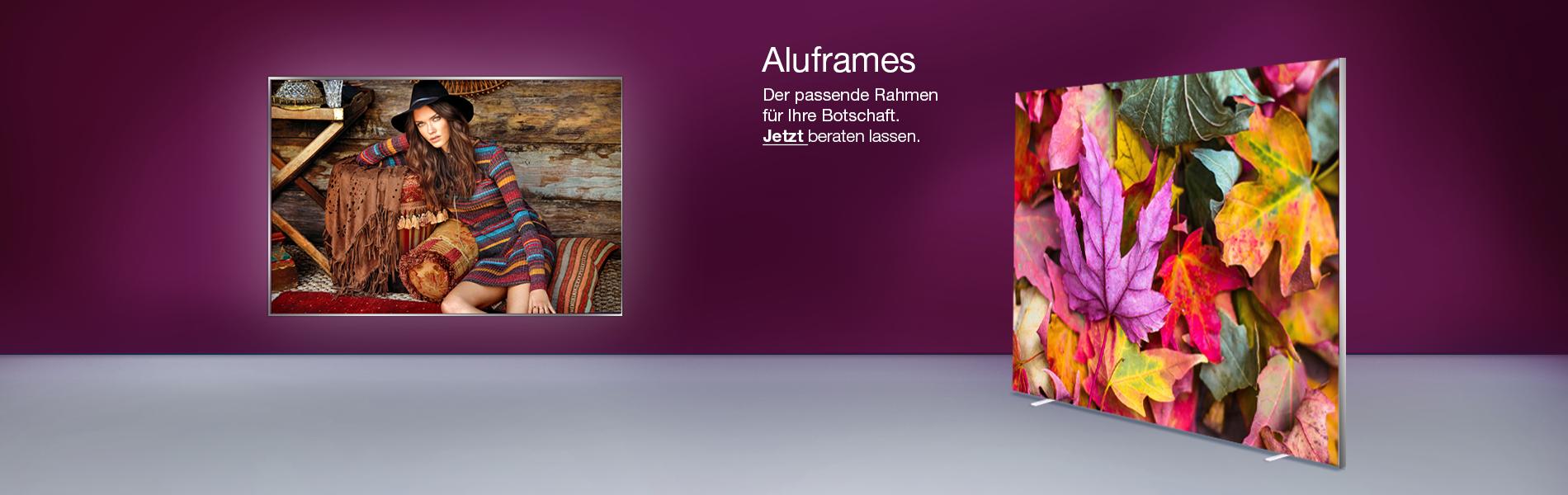 Alu-frames