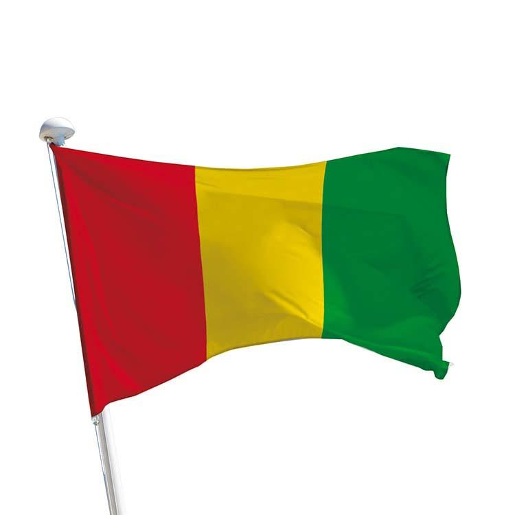 Drapeau Guinée pour mât