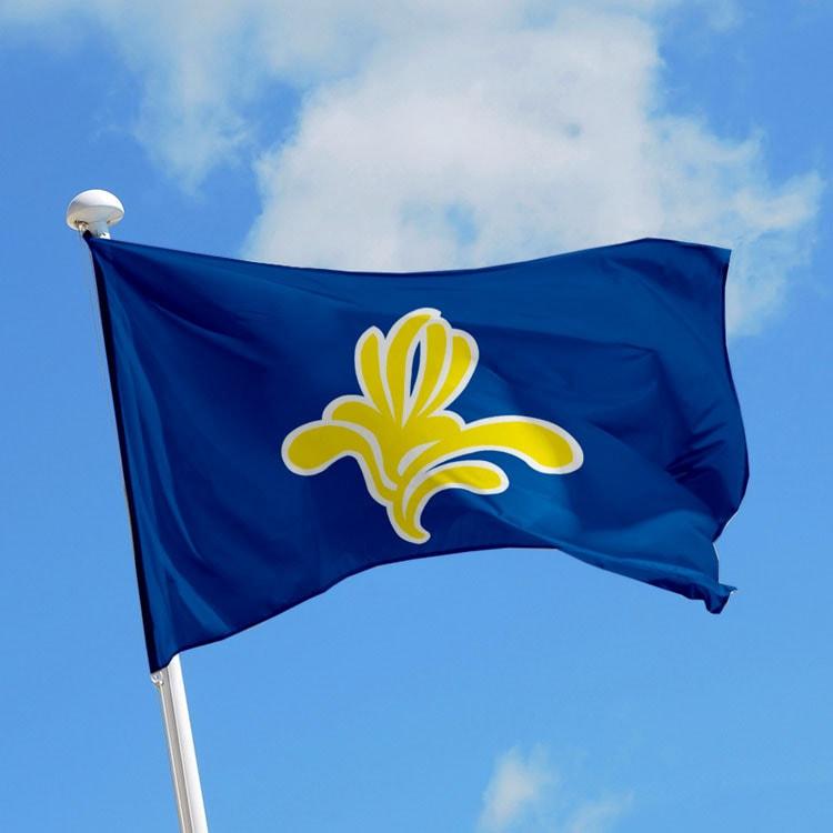 Bruxelles drapeau région belgique