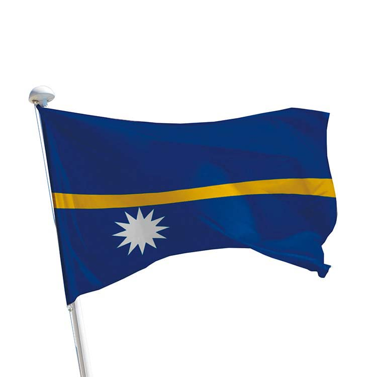 Drapeau Ile Nauru pour mât