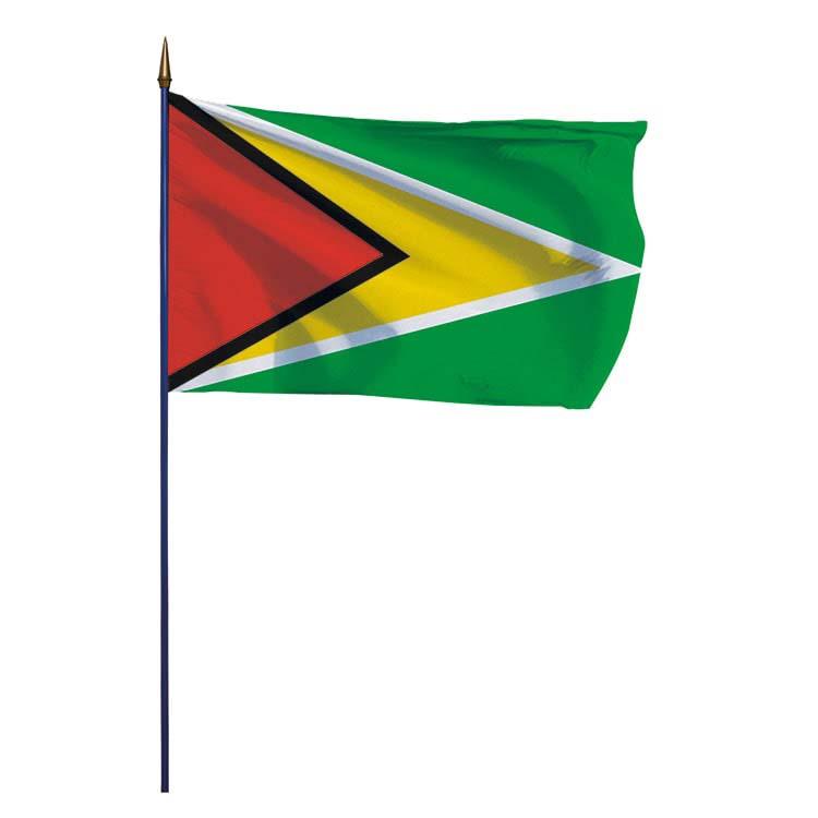 Drapeau Guyana sur hampe