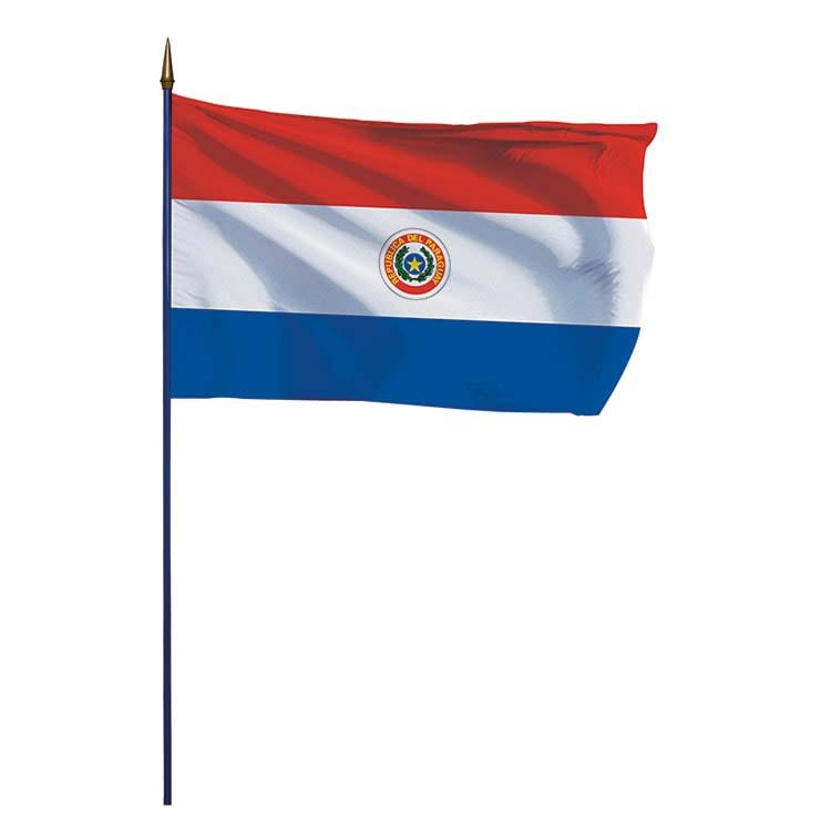 Pavillon du Paraguay sur hampe