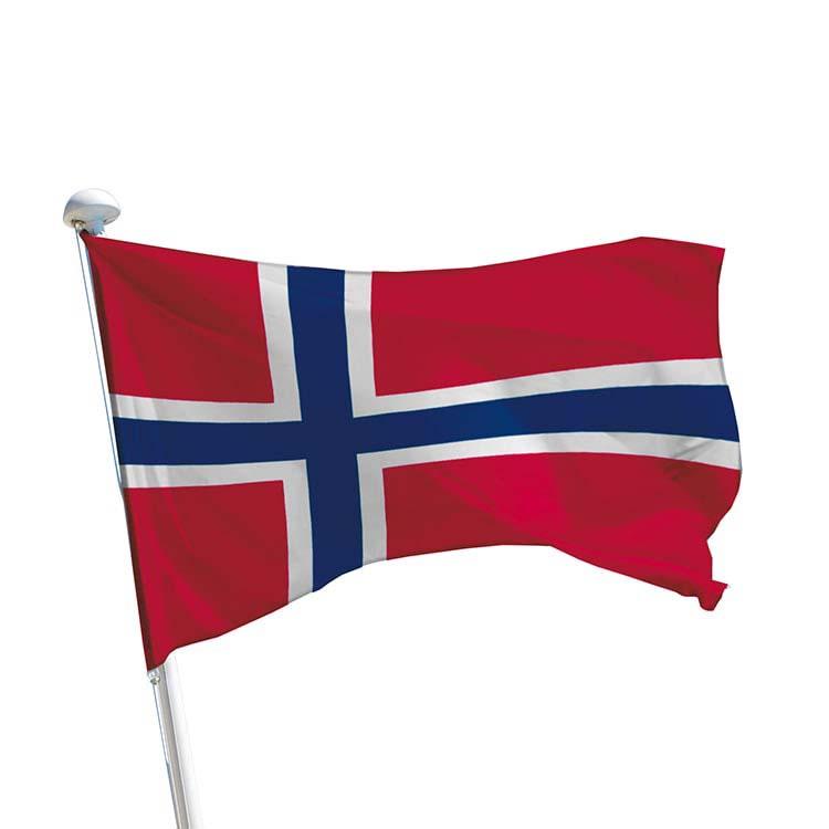 Drapeau Norvège pour mât