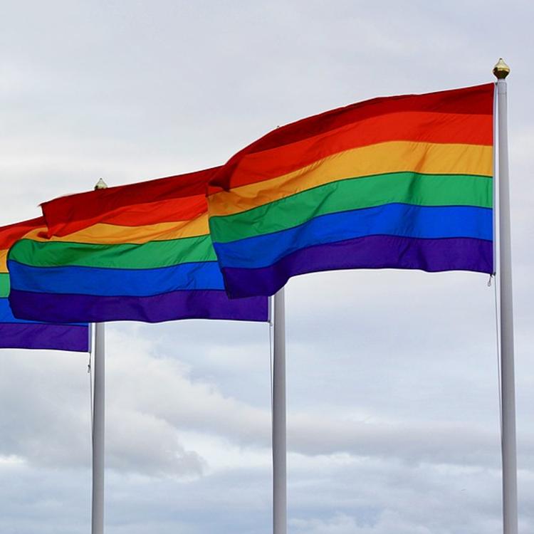 LGBTQ quer
