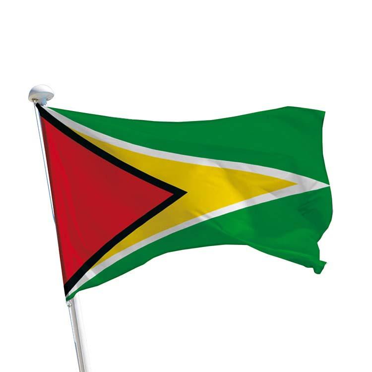 Drapeau Guyana pour mât