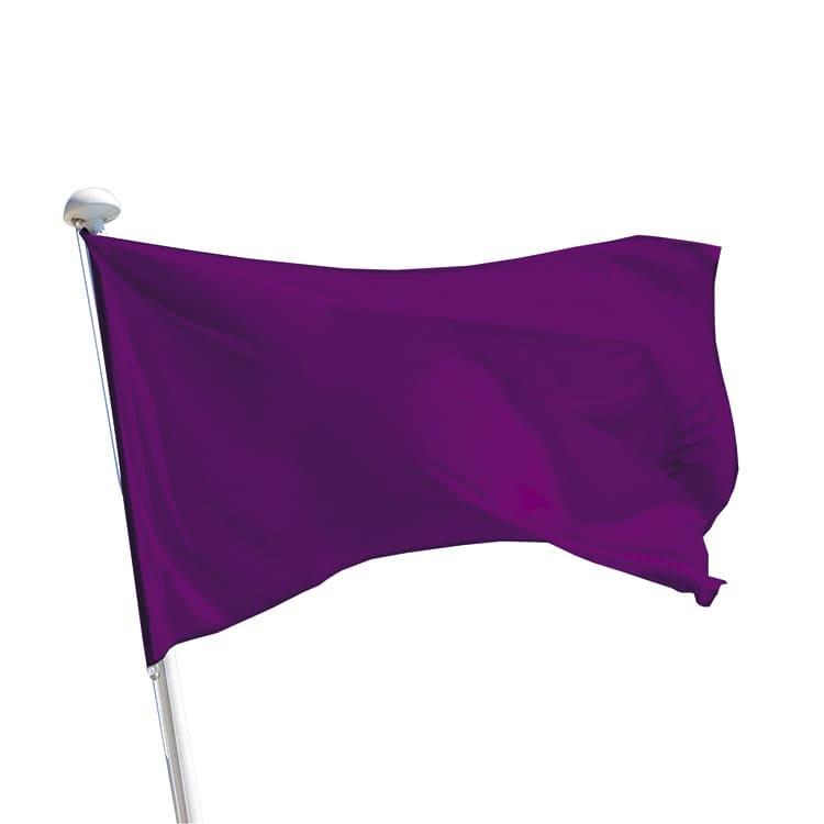Drapeau baignade violet