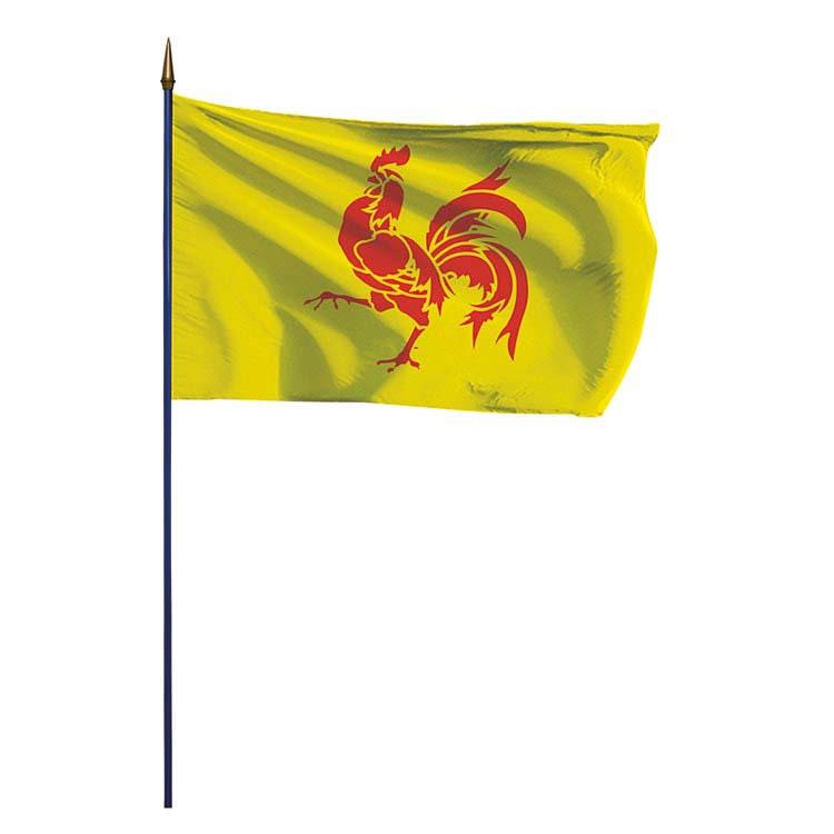 Pavillon province wallone ou drapeau wallon